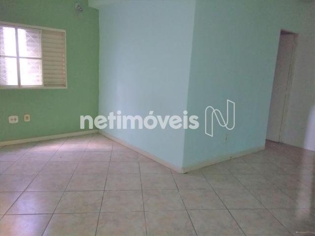 Casa à venda com 5 dormitórios em Padre eustáquio, Belo horizonte cod:747229 - Foto 15