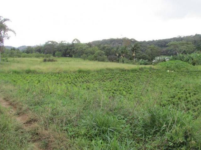 CHÁCARA PARA LOCAÇÃO NO COLONIA COM 15000M², DE FUNDO PARA A REPRESA BILLINGS - Foto 6