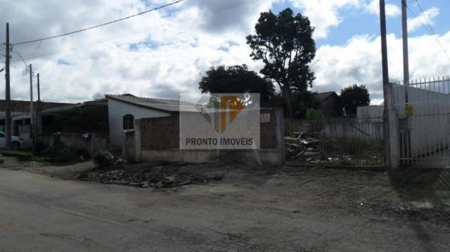 Terreno para Venda em São José dos Pinhais, JD. SUÍÇA, 1 dormitório - Foto 7