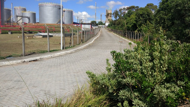 Terreno Industrial ao lado da Repar em Araucária - Foto 4