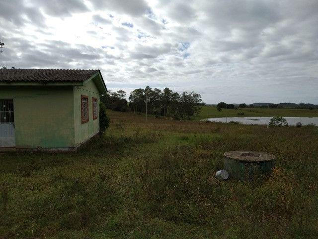 Velleda oferece sitio de 2 ha escriturado com casa e galpão, 1 km da RS040 - Foto 6