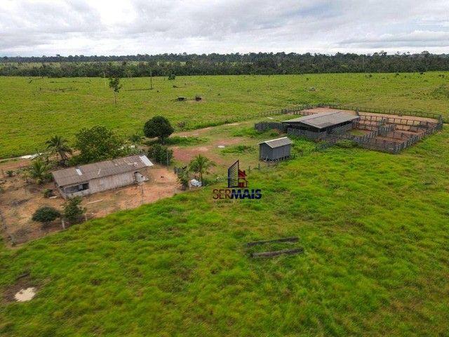 Fazenda à venda, por R$ 40.000.000 - Área Rural de Porto Velho - Porto Velho/RO - Foto 3