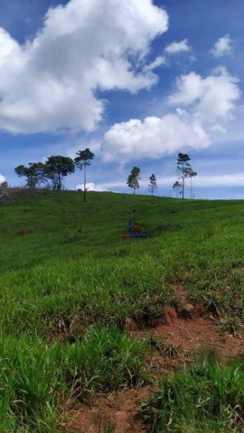 Sítio à venda, 508200 m² por R$ 670.000 - Zona Rural - Vale do Anari/RO - Foto 11