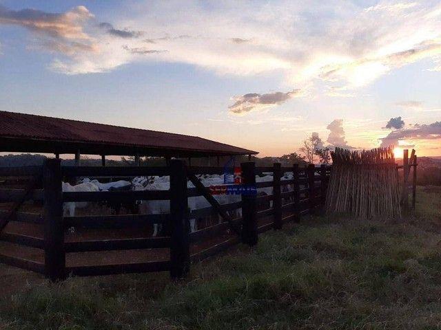 Fazenda à venda, por R$ 7.900.000 - Centro - Alta Floresta D'Oeste/RO - Foto 14