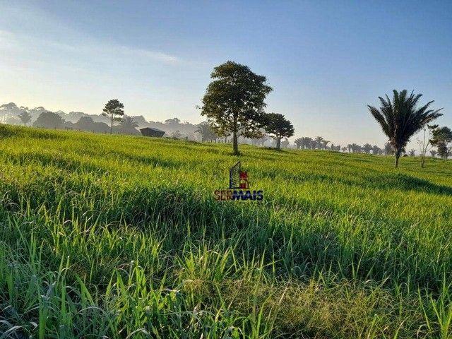 Sítio à venda por R$ 1.680.000 - Área Rural de Porto Velho - Porto Velho/RO - Foto 9