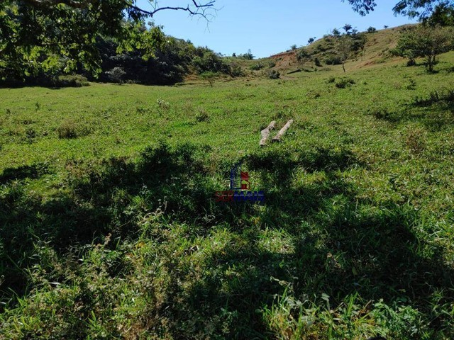 Sítio à venda, por R$ 2.150.000 - Centro - Alta Floresta D'Oeste/RO - Foto 12