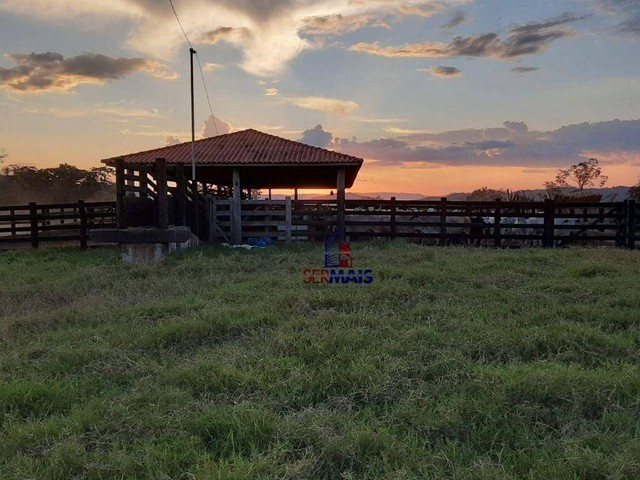 Fazenda à venda, por R$ 7.900.000 - Centro - Alta Floresta D'Oeste/RO - Foto 17
