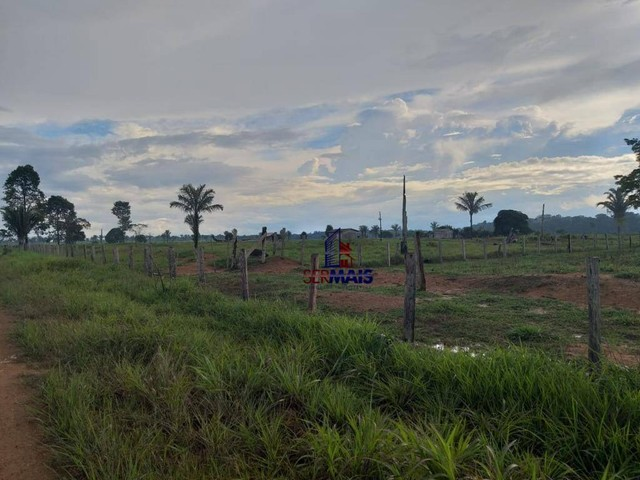 Fazenda à venda, por R$ 4.140.000 - Zona Rural - Machadinho D'Oeste/RO - Foto 7