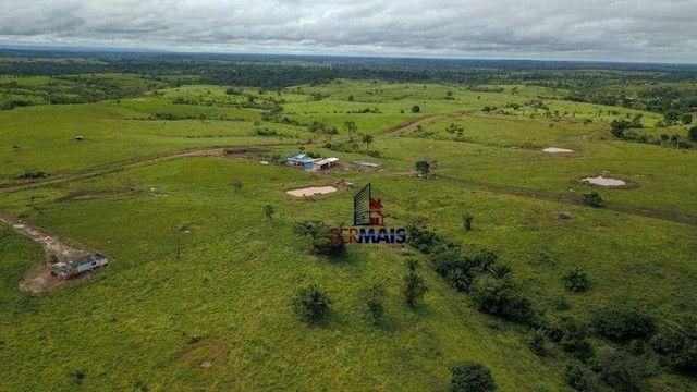 Fazenda com à venda, por R$ 14.000.000 - Centro - Alta Floresta D'Oeste/RO - Foto 13