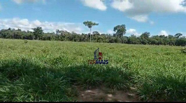 Fazenda à venda, por R$ 8.370.000 - Zona Rural - São Francisco do Guaporé/RO - Foto 5
