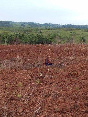 Fazenda à venda por R$ 9.234.000,00 - Zona Rural - Alta Floresta D'Oeste/RO - Foto 6