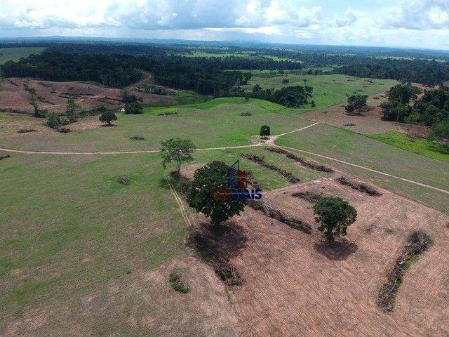 Sítio à venda, por R$ 3.500.000 - Zona Rural - Presidente Médici/RO - Foto 7