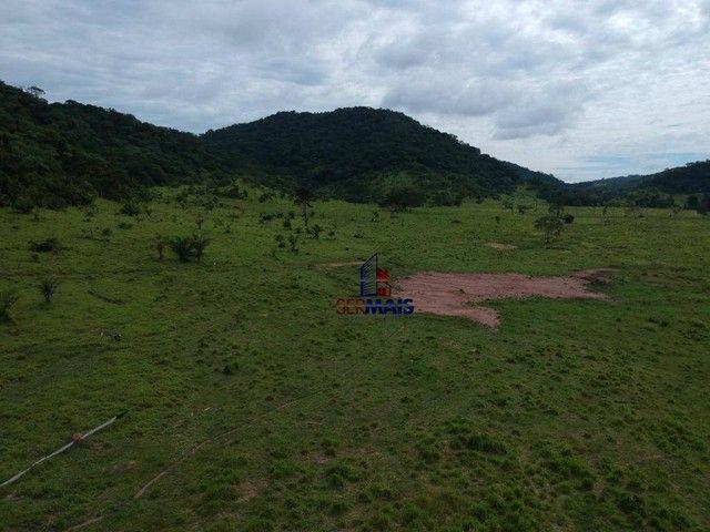 Fazenda à venda, por R$ 19.950.000 - Santa Felicidade - Alta Floresta D'Oeste/RO - Foto 5