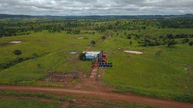 Fazenda com à venda, por R$ 14.000.000 - Centro - Alta Floresta D'Oeste/RO - Foto 12