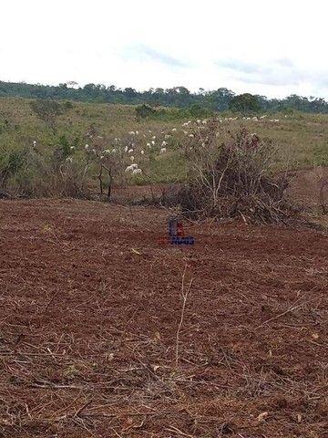 Fazenda à venda por R$ 9.234.000,00 - Zona Rural - Alta Floresta D'Oeste/RO - Foto 15