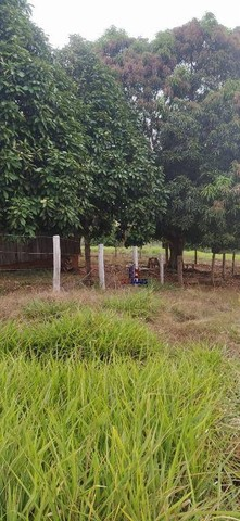 Sítio à venda, 508200 m² por R$ 670.000 - Zona Rural - Vale do Anari/RO - Foto 2