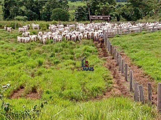 Fazenda à venda, por R$ 35.000.000 - Zona Rural - Machadinho D'Oeste/RO