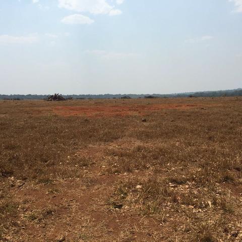 Fazenda 15000 ha 150 Km Sorriso MT - Foto 6