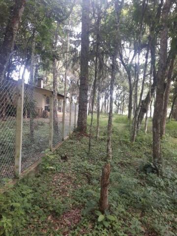 São José dos Pinhais - Chácara c/ 2328m² em condomínio fechado próx. BR 277 - Foto 12