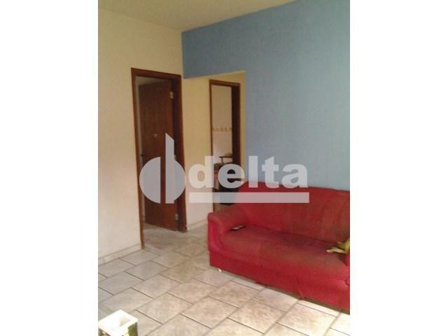 Casa para alugar com 3 dormitórios em Segismundo pereira, Uberlândia cod:545080 - Foto 4