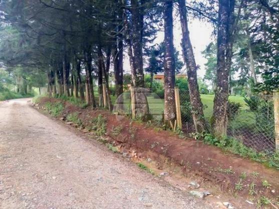 Chácara à venda em Área rural, Mandirituba cod:150401 - Foto 13