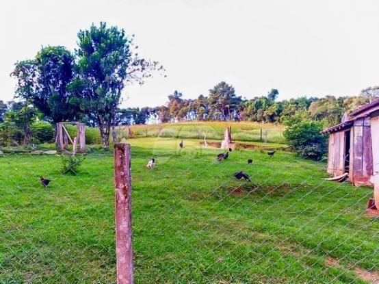 Chácara à venda em Área rural, Mandirituba cod:150401 - Foto 18