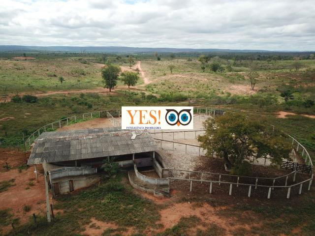 Fazenda para venda, chapada, andaraí, 2.530,00 hectares. - Foto 8