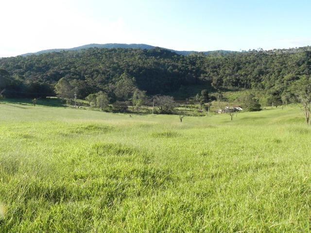 GE Compre agora seu terreno 500m2 em mariporã para o final do ano 10.000 - Foto 2