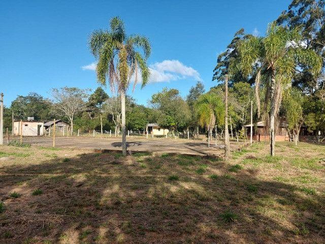 Velleda oferece B.A.R.B.A.D.A 2 hectares com cancha de futebol e frutíferas - Foto 3