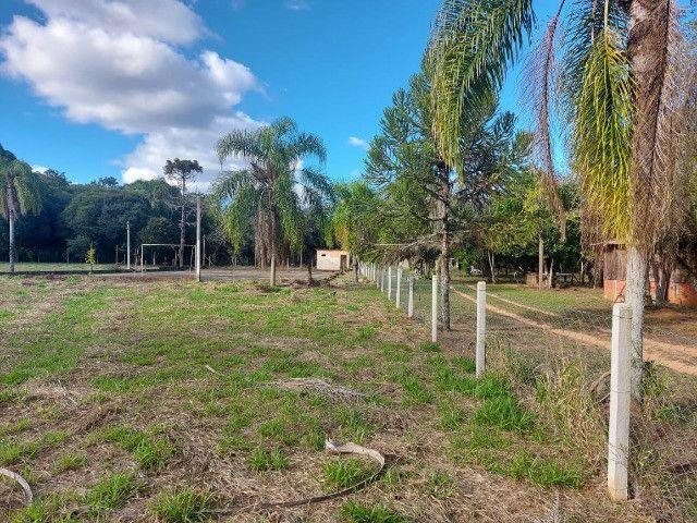Velleda oferece B.A.R.B.A.D.A 2 hectares com cancha de futebol e frutíferas - Foto 15