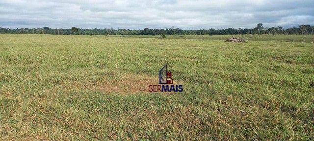 Fazenda à venda, 300 alqueires 250 aberto por R$ 15.000.000 - Zona Rural - São Francisco d - Foto 6