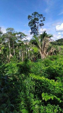 Sítio à venda, 508200 m² por R$ 670.000 - Zona Rural - Vale do Anari/RO - Foto 4