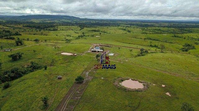 Fazenda com à venda, por R$ 14.000.000 - Centro - Alta Floresta D'Oeste/RO - Foto 2