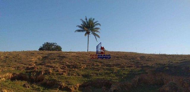 Sítio com 1 dormitório à venda, por R$ 3.150.000 - Zona Rural - Presidente Médici/RO - Foto 20