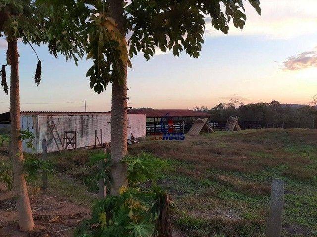 Fazenda à venda, por R$ 7.900.000 - Centro - Alta Floresta D'Oeste/RO - Foto 4