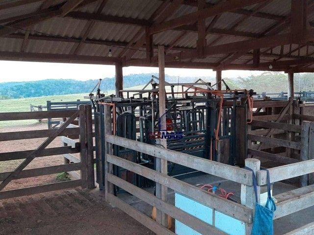 Fazenda à venda, por R$ 7.900.000 - Centro - Alta Floresta D'Oeste/RO - Foto 20