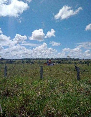 Fazenda à venda, por R$ 3.100.000 - Zona Rural - Machadinho D'Oeste/RO - Foto 8