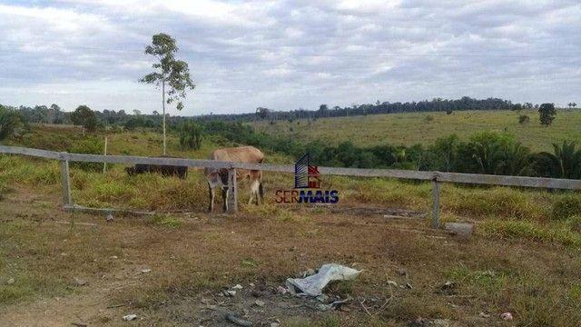 Sítio com 1 dormitório à venda, 493679 m² por R$ 850.000 - Zona Rural - Vale do Anari/RO - Foto 7