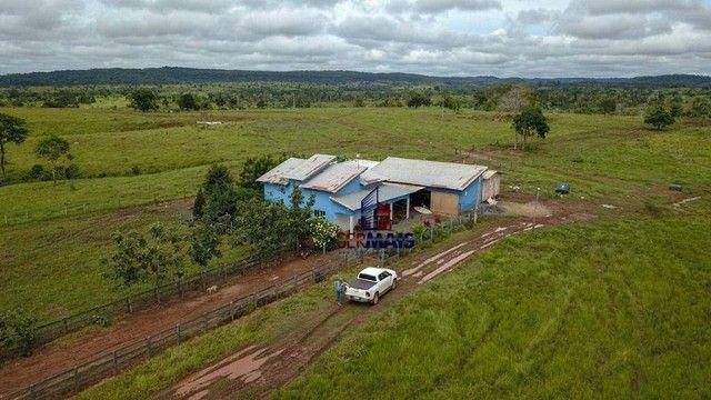 Fazenda com à venda, por R$ 14.000.000 - Centro - Alta Floresta D'Oeste/RO - Foto 5