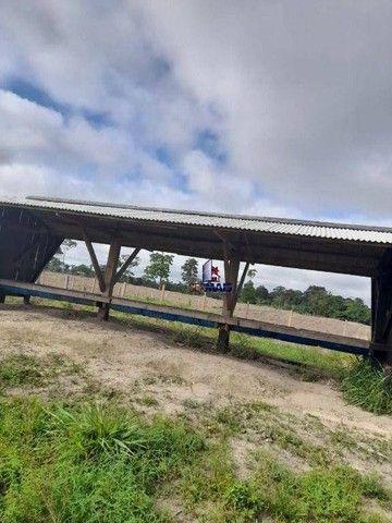 Sítio à venda por R$ 1.680.000 - Área Rural de Porto Velho - Porto Velho/RO - Foto 15