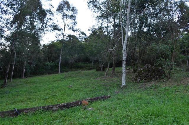 Sítio rural à venda, vale dos pinheiros, gramado. - Foto 8