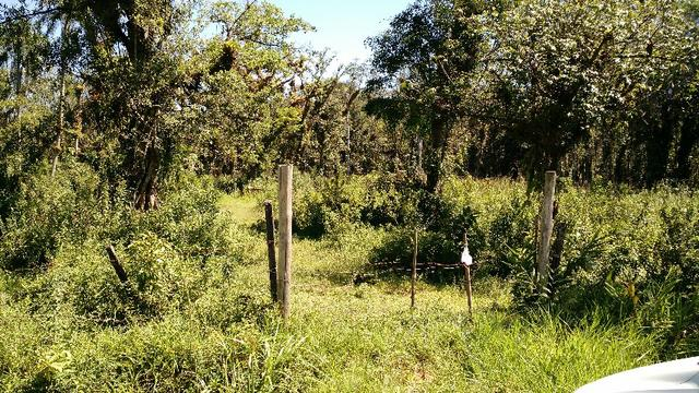 Oportunidade - Terreno no Cubatão em Joinville