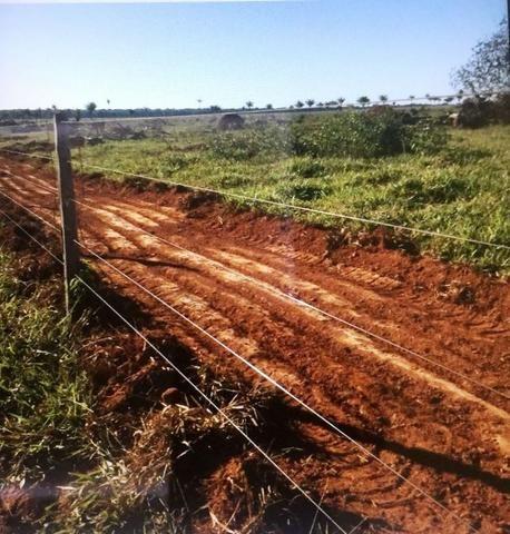 Fazenda 15000 ha 150 Km Sorriso MT - Foto 4