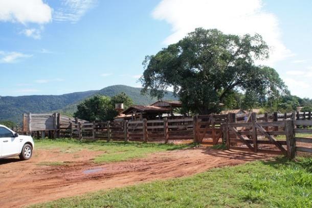 Fazenda 1750 ha N.S. Livramento MT - Foto 8