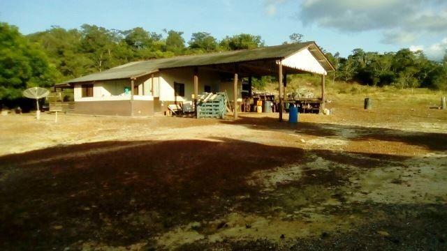 Fazenda 7900 ha Alta Floresta MT - Foto 11