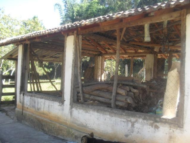 Fazenda com 57 hectares em Carmopolis de Minas - Foto 15