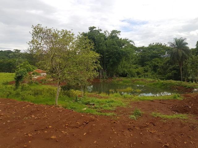 Fazenda 1.000 alqueires em rosana 70.000.000.00 - Foto 19