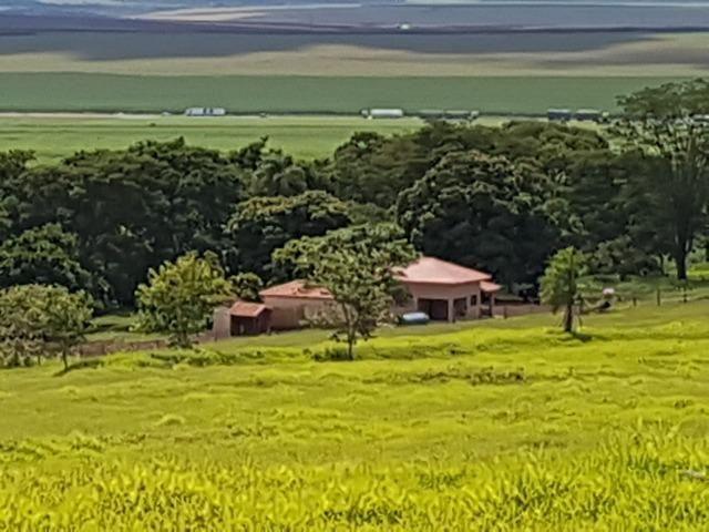 Fazenda 1.000 alqueires em rosana 70.000.000.00 - Foto 10