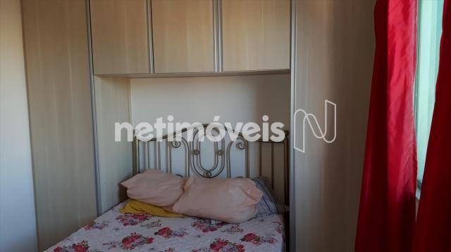 Apartamento à venda com 2 dormitórios em Glória, Belo horizonte cod:763399 - Foto 3