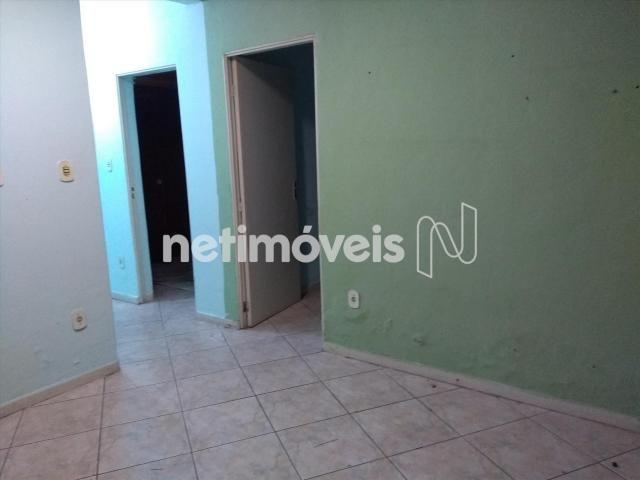 Casa à venda com 5 dormitórios em Padre eustáquio, Belo horizonte cod:747229 - Foto 16
